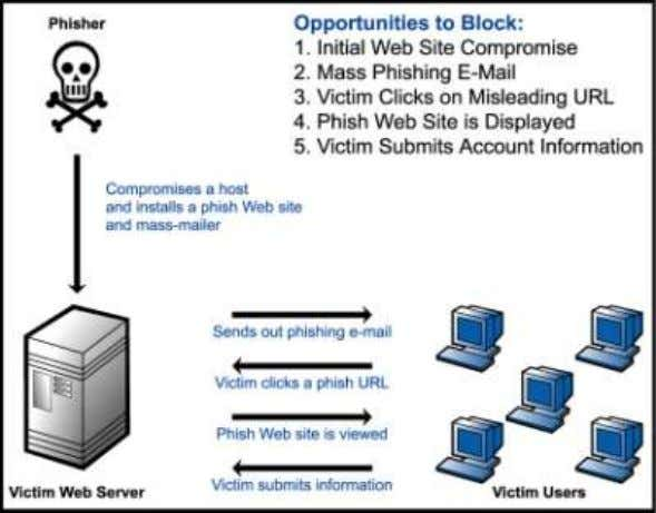 Section 9 – Phising :- Phishing - is an e-mail fraud method in which the perpetrator