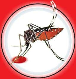 DENGUE A Continuing Global Threat Dengue can be Diagnosed & CONFIRMED by: ELISA RANGE: NS1 ANTIGEN