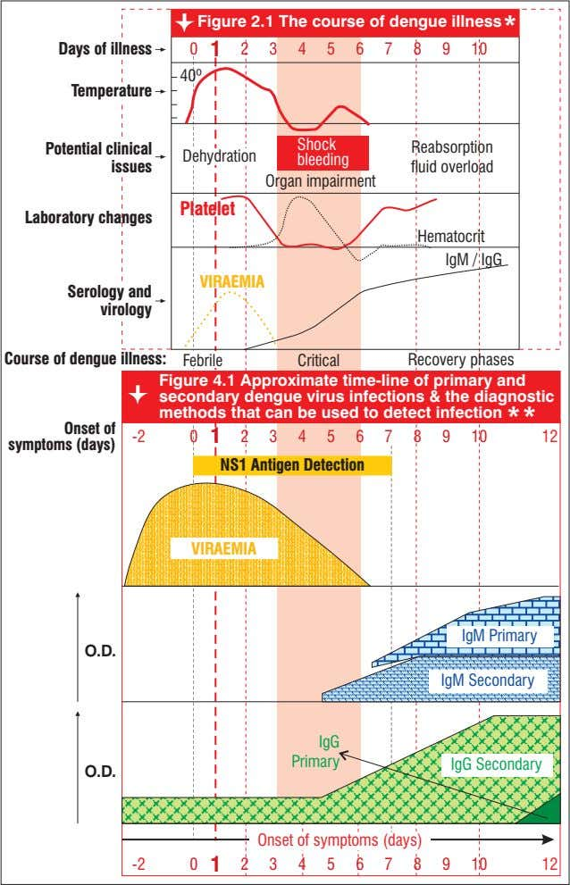 Figure 2.1 The course of dengue illness * Days of illness 0 1 2 3