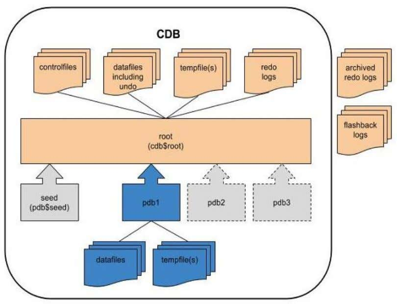 Files in CDB & PDBs