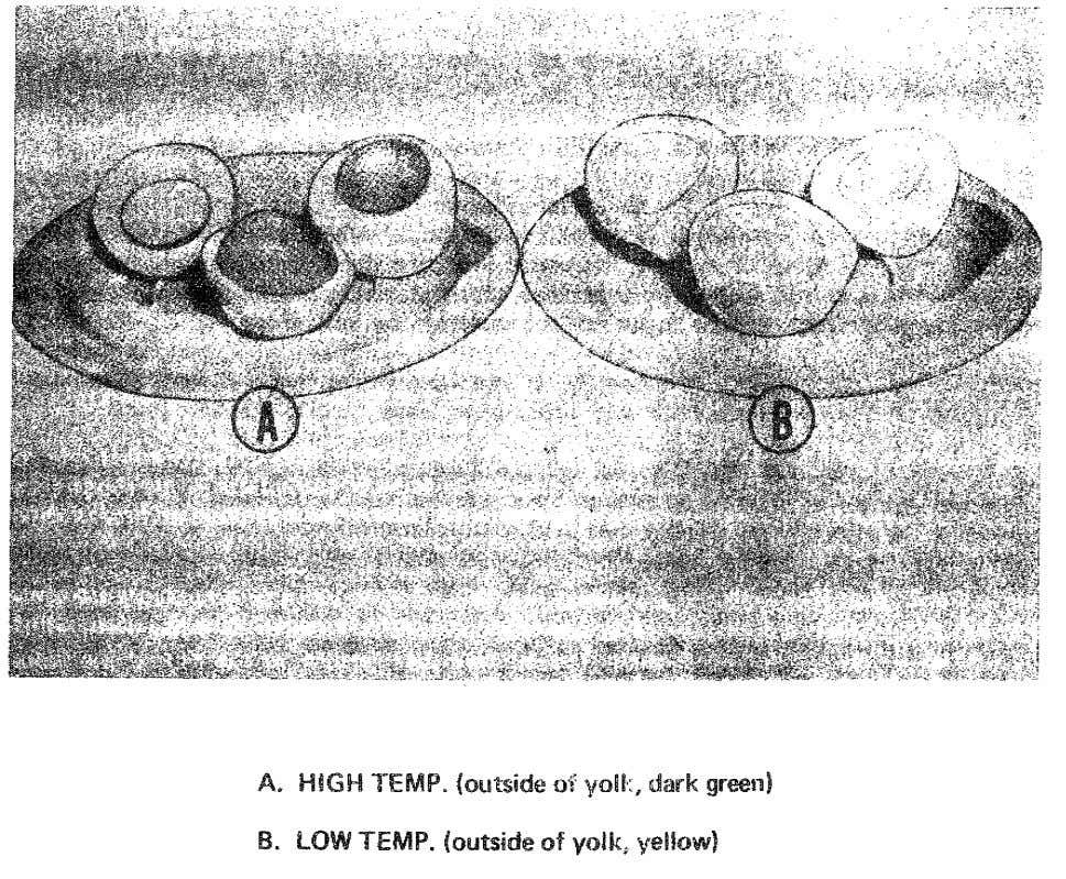 Figure 11. Comparison of eggs boiled as different temperatures. 32