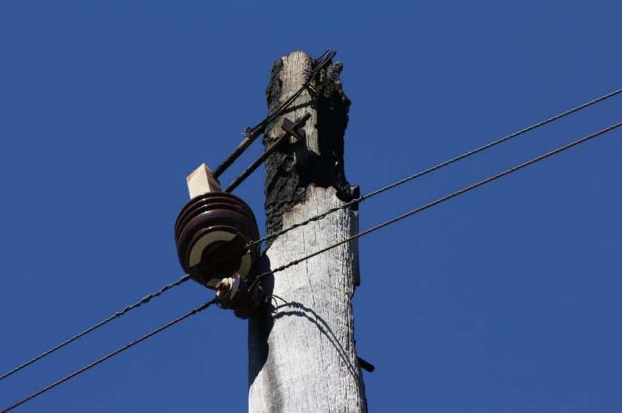 taken on 8 February 2009 by Senior Electrical Inspector Ross Reid, Energy Safety . Photograph shows