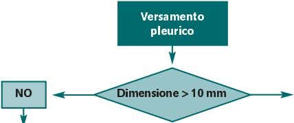 Versamento pleurico NO Dimensione > 10 mm