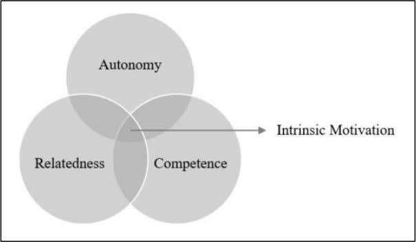 innate needs within SDT resulting in intrinsic motivation Adapted from Deci and Ryan (2000) Autonomy may