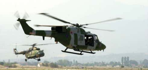 with Lynx anti-tank helicopters armed with TOW missiles. Combat Service Support Troops These troops sustain the