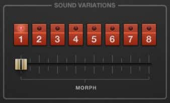 MORPH slider to shift between variations for dynamic sound. The Sound Variations section. Controls ▪ Sound