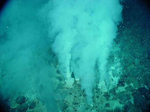 A hydrothermal vent © NOAA The environment around these vents is extremely hostile as there