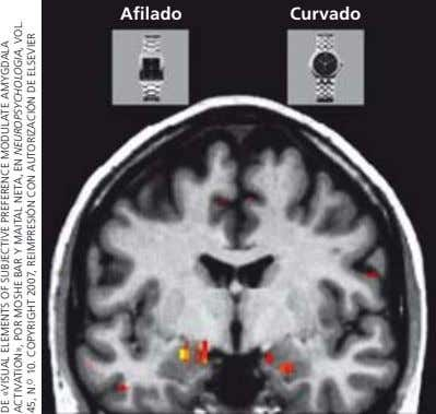 Afilado Curvado DE «VISUAL ELEMENTS OF SUBJECTIVE PREFERENCE MODULATE AMYGDALA ACTIVATION», POR MOSHE BAR Y