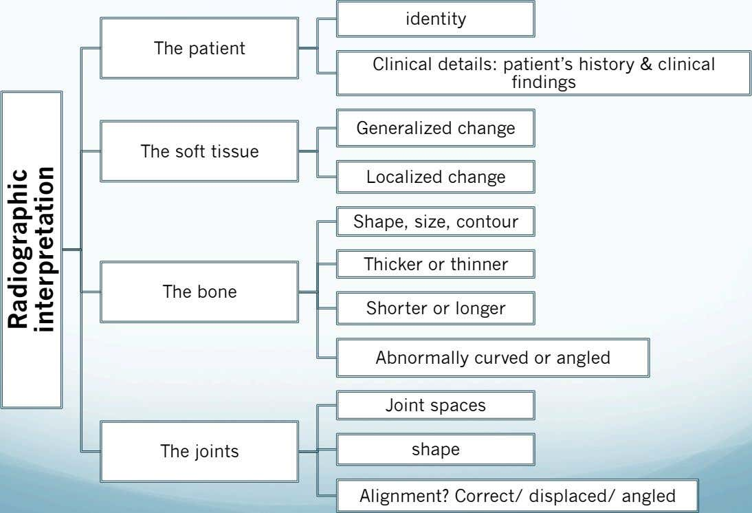 identity The patient Clinical details: patient's history & clinical findings Generalized change The soft tissue