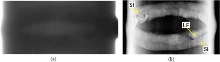 T.M. Centeno NDT&E International 86 (2017) 7–13 Fig. 2. (a) Clipping of the original image, (b)
