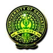 INSTITUTE OF DISTANCE AND OPEN LEARNING Gauhati University Guwahati - 14 Syllabus for BSc in