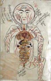 Lecture   History of Medicine • 700 – 1500 AD (Arabic Medicines) Science, Technology and Society