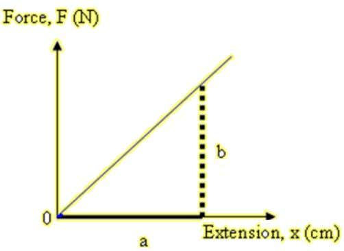 Extension of the spring x = l- l 0