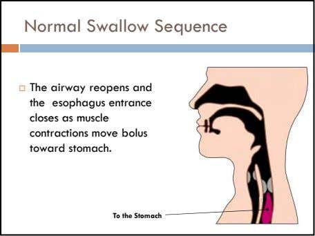 Normal Swallow Sequence The airway reopens and the esophagus entrance closes as muscle contractions move