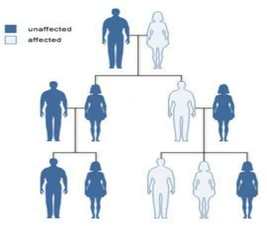 Hereditary  may follow a genetic pattern or familial condition