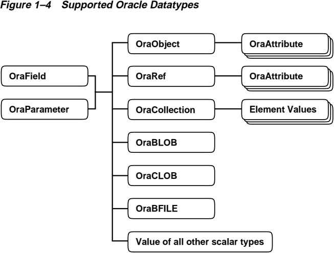 Figure 1–4 Supported Oracle Datatypes OraObject OraAttribute OraField OraRef OraAttribute OraParameter