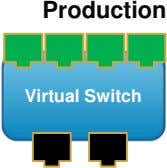 Production Virtual Switch