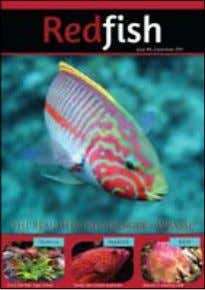 We hope you enjoyed this issue. Please, tell a friend about Redfish . www.redfishmagazine.com.au Contact Details