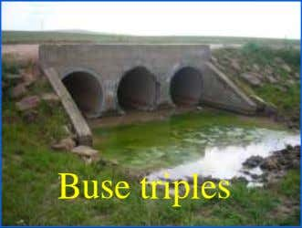Buse triples