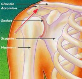 where they meet is called the acromio-clavicular joint. But if you have a pain at the