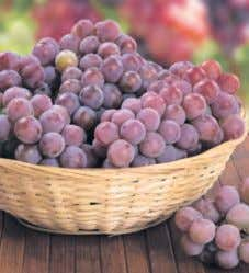 with rewards card Serving with rewards card Suggestion 1 47 lb. Sweet, Seedless Red Grapes Save