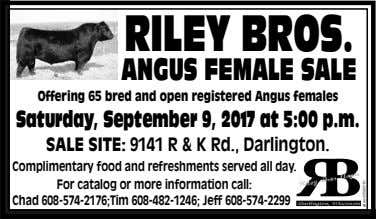 RILEYBROS. ANGUSFEMALESALE Offering 65 bred and open registered Angus females Saturday, September 9, 2017 at