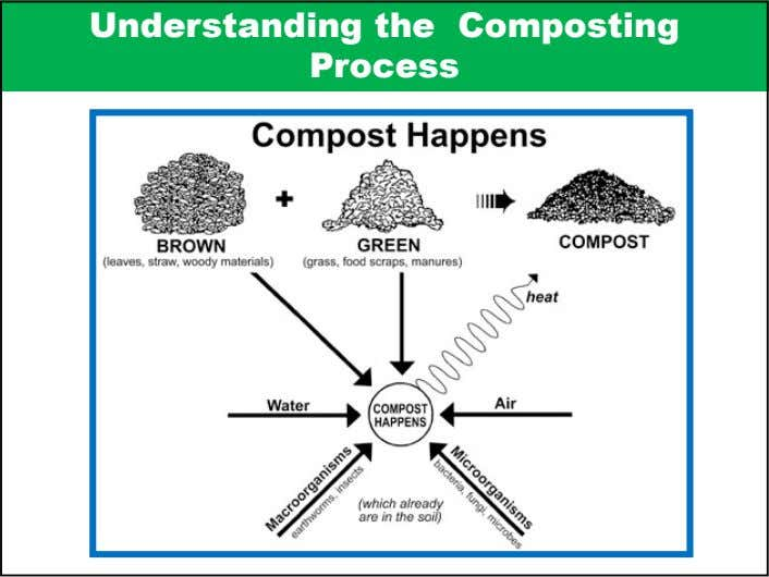 Understanding the Composting Process