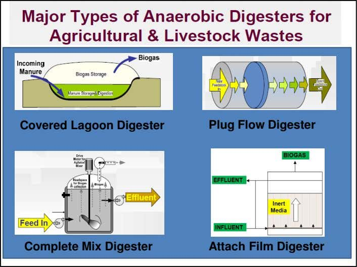 Covered Lagoon Digester Plug Flow Digester Complete Mix Digester Attach Film Digester