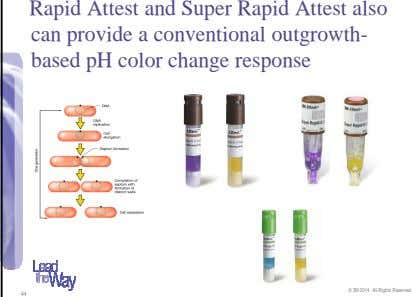 Rapid Attest and Super Rapid Attest also can provide a conventional outgrowth- based pH color