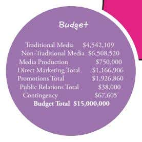 Budget Traditional Media $4,542,109 Non-Traditional Media $6,508,520 Media Production Direct Marketing Total