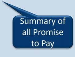Summary of all Promise to Pay
