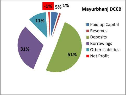 -1% 5% 1% Mayurbhanj DCCB 11% 31% 51% Paid up Capital Reserves Deposits Borrowings Other