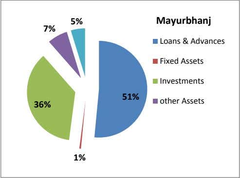 5% Mayurbhanj 7% Loans & Advances Fixed Assets Investments 51% other Assets 36% 1%