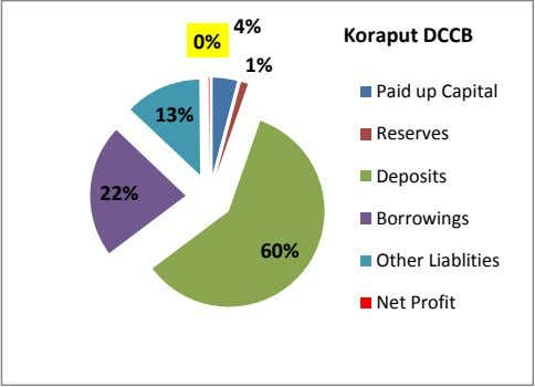 4% Koraput DCCB 0% 1% Paid up Capital 13% Reserves Deposits 22% Borrowings 60% Other