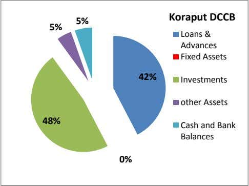 Koraput DCCB 5% 5% Loans & Advances Fixed Assets 42% Investments other Assets 48% Cash