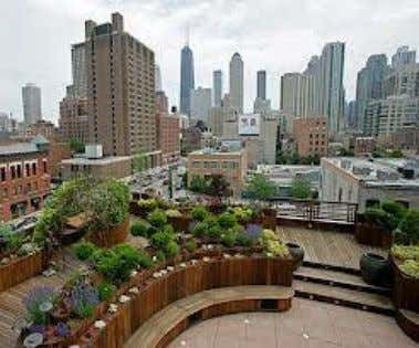 Chicago Uncommon Ground, a certified green restaurant in Chicago, hosts an organic farm on its rooftop.