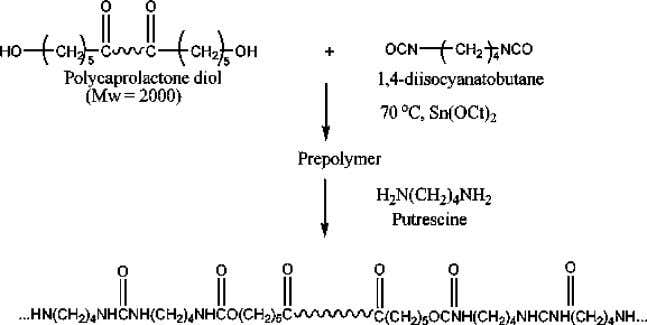 amide), modified from Deschamps et al . 4 4 (a) (b) (c) Figure 5. Preparation schemes