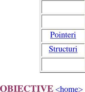 Pointeri Structuri OBIECTIVE <home>