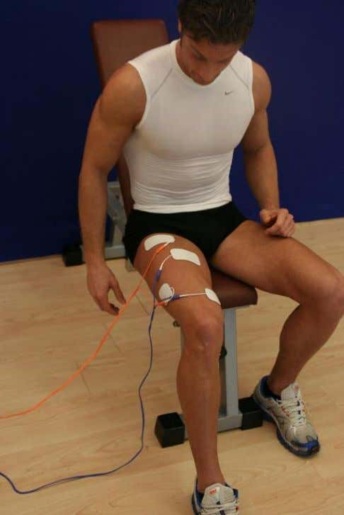completely at rest (see picture). Transformation Recommendations When performing dynamic exercises, either with natural