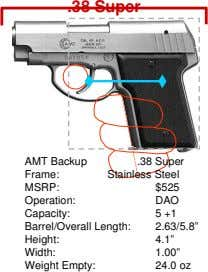 .38 Super AMT Backup .38 Super Frame: Stainless Steel MSRP: $525 Operation: DAO Capacity: 5 +1