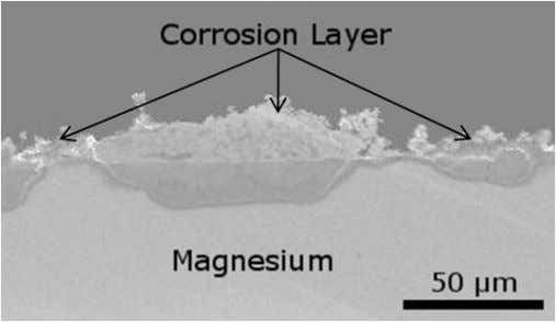 Figure 3. SEM micrograph highlighting the morphology of the corrosion layer forming on a pure