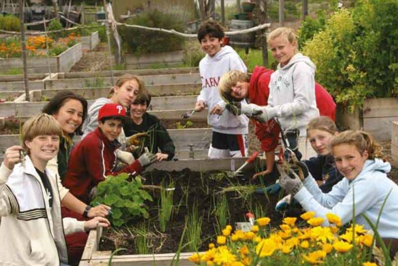 Gardens for Learning Creating and Sustaining Your School Garden