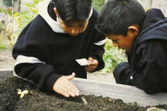 cases, they will find proper seed spacing and depth information on Gardens for Learning: Planting Your