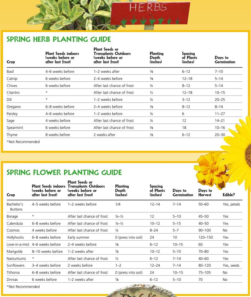 SPRING hERB PLaNTING GUIDE Plant Seeds indoors (weeks before or after last frost) Plant Seeds