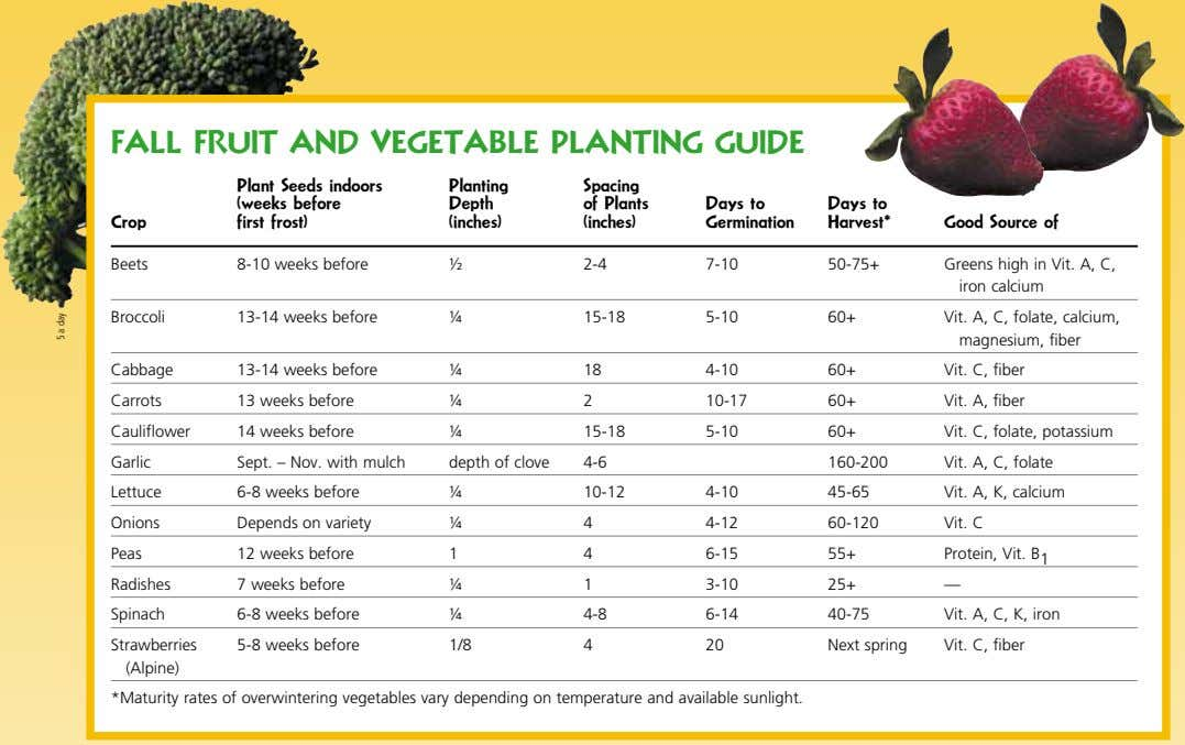FaLL FRUIT aND VEGETaBLE PLaNTING GUIDE Plant Seeds indoors (weeks before first frost) Planting Spacing
