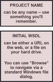 PROJECT NAME can be any name – use something you'll remember. INITIAL WSDL can be