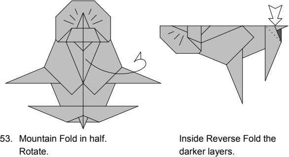 53. Mountain Fold in half. Rotate. 54. Inside Reverse Fold the darker layers.