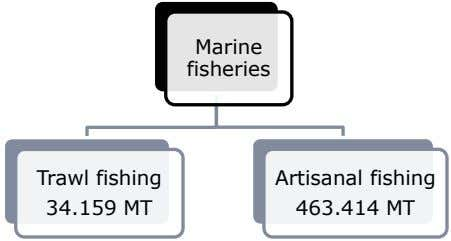 Marine fisheries Trawl fishing Artisanal fishing 34.159 MT 463.414 MT