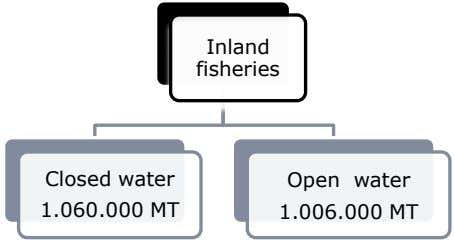 Inland fisheries Closed water Open water 1.060.000 MT 1.006.000 MT