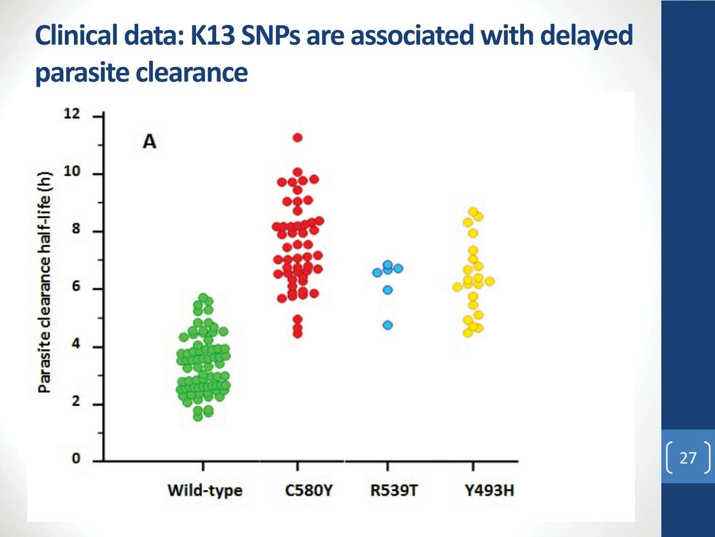 Clinical data: K13 SNPs are associated with delayed parasite clearance 27